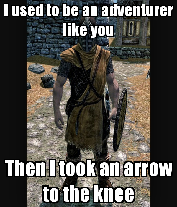 i-used-to-be-an-adventurer-like-you-then-i-took-an-arrow-to-the-knee.png