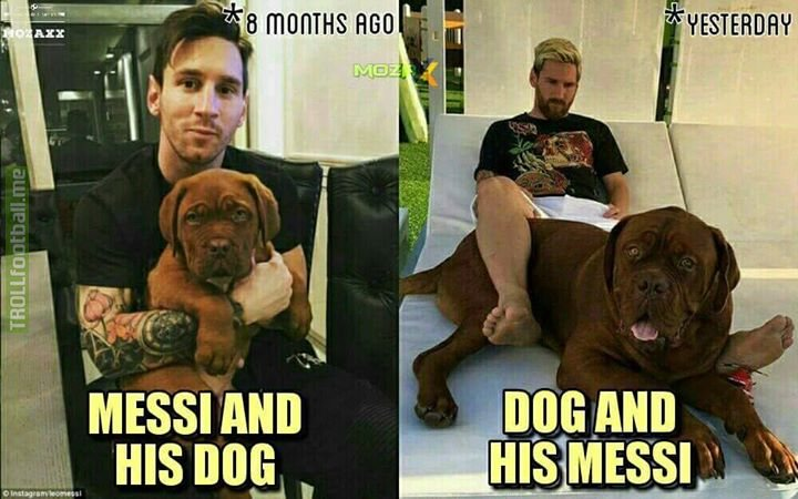 what-is-lionel-messi-feeding-his-dog.jpg